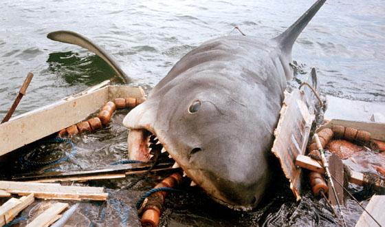 tiburon-de-tiburon-diario-de-una-cinefila