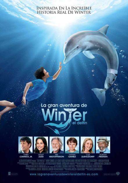 Poster de La Gran Aventura de Winter el Delfín