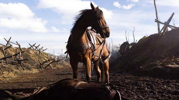Joey en War Horse